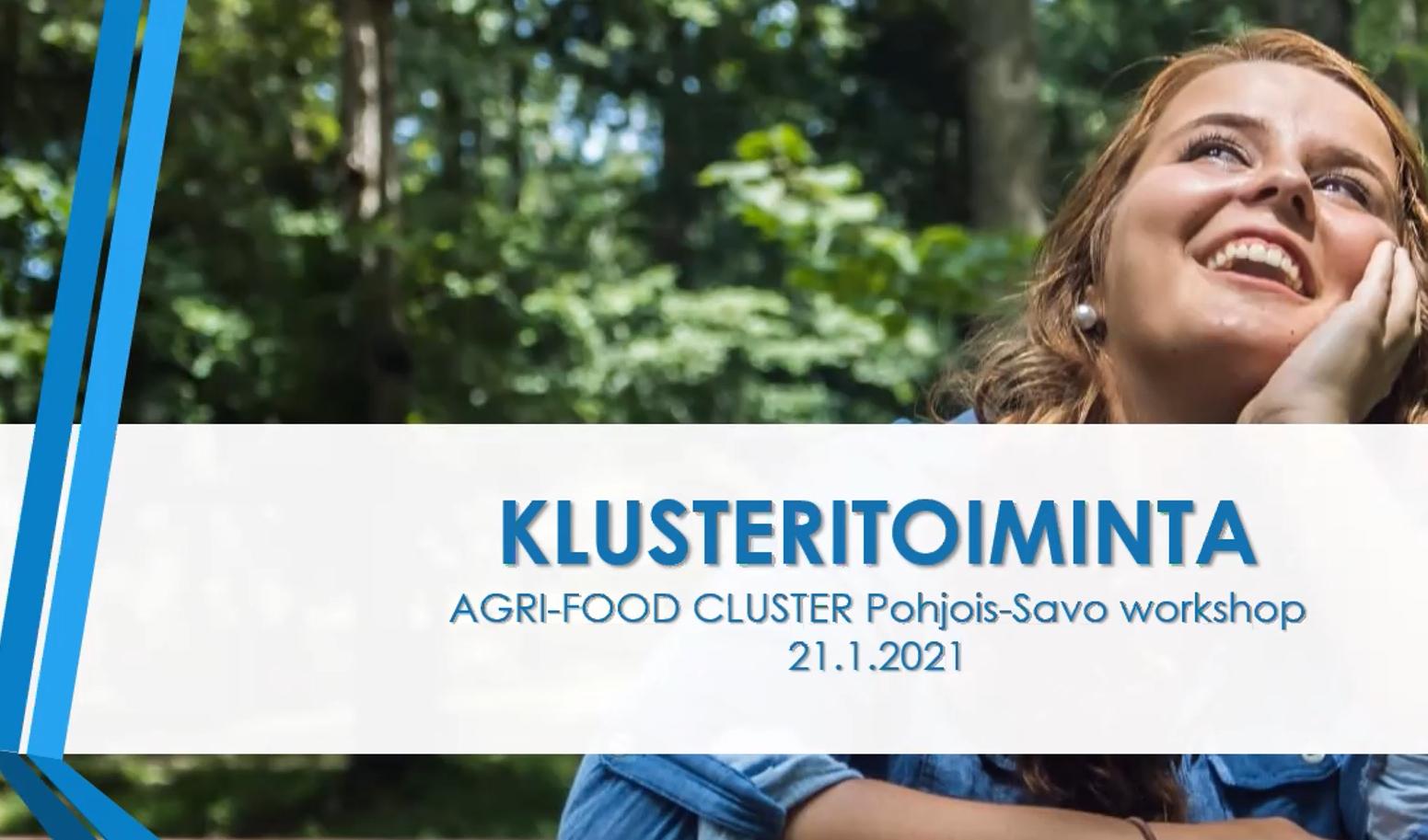 Read more about the article Ensimmäinen klusterityöpaja